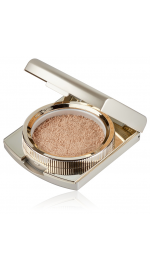 Powder Dark Beige Make-up (пудра, цвет: Dark Beige), 24г 20050757